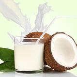 Кокосовое молоко сухое Veganprod 250г, фото 2