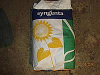Гібрид соняшнику Syngenta NK Neoma 2016