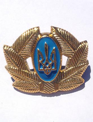 Кокарда Солдатская золото, фото 2