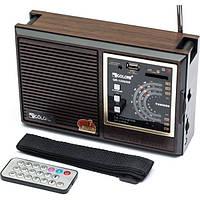GOLON QR-133UAR Радиоприемник с mp3