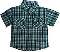 Детская рубашка на мальчика. 92-116 р.р. Зеленая. Оптом., фото 1