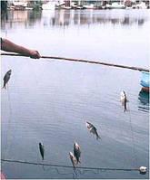 Рыболовный экран 120см*100см, ячейка 15,18,20,25,30, для промышленного лова