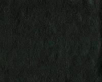 Кожзам мебельный Родео 04