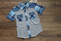 Рубашка для мальчиков 4- 8 лет