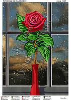 """""""Роза на окне"""".  Схема для вышивки бисером"""