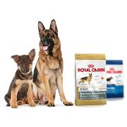 Royal Canin сухой корм для собак