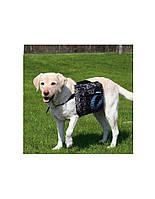 TRIXIE рюкзак для собаки 23 x 15 см черный M