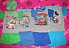 Детская футболка с шортами серые кулир