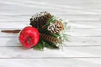 Зимовий букет з червоним яблучком і шишками