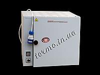 Шкаф сушильный лабораторный СНОЛ 75/350 (вент)