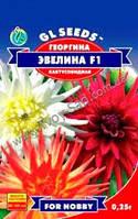 Семена Георгина Эвелина F1 кактусовидная смесь 0,5 г