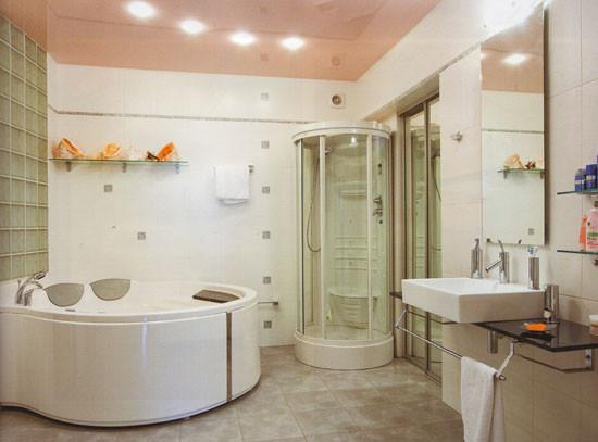 Выбор ванны или душевой кабины