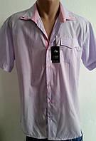 Рубашка мужская сирень р.46-48