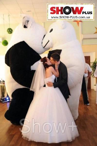 Надувной костюм, пара: Панда и Белый медведь (жених и невеста) на прокат