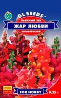 Семена цветов Львиный зев Жар любви высокорослый 0,25 г
