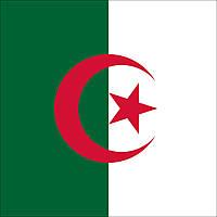 Флаг Алжира (Аппликация) - (1м*1.5м), фото 1
