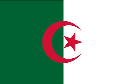 Флаг Алжира (Аппликация) - (1м*1.5м), фото 2