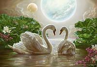 Фотообои с лебедями Волшебный сон размер 144 х 207 см