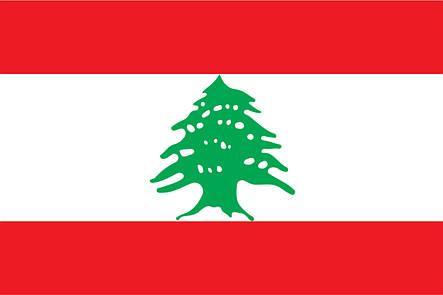 Флаг Ливана (Аппликация) - (1м*1.5м), фото 2