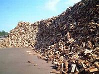 Продам дрова для бани котла камина дубовые колотые Киев