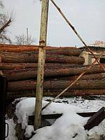 Дрова купить Киев дубовые березовые сосновые колотые кругляк