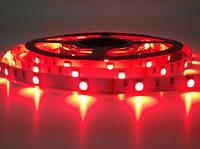Светодиодная лента 5050\60Led красный