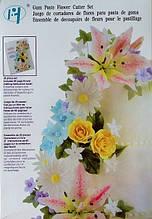 Набор для изготовления цветов из мастики (29 предметов)