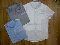 Рубашки на мальчика оптом, Glo-story 104 рр, фото 1