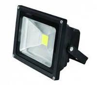 Прожектор LED EUROELECTRIC COB черный 10W 6500K classic