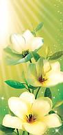 Фотообои на стену с цветами Стелла размер 210 х 97 см