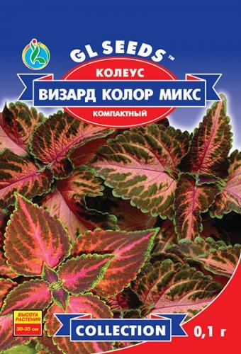 Семена КОЛЕУС ВИЗАРД КОЛОР МИКС компактний 10 шт