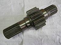 70-2407053 Шестерня МТЗ ведущая левая (длинная), фото 1