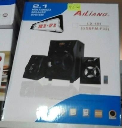 Акустическая система Ailiang LX-101 USBFM-F32, фото 2