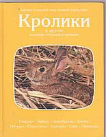 Кролики и другие мелкие млекопитающие. Удивительный мир живой природы
