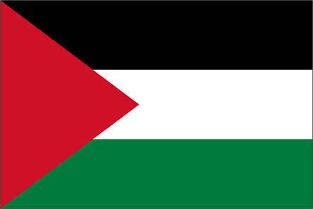 Флаг Палестины - (1м*1.5м), фото 2