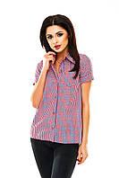 Рубашка женская в клетку - Красный + электрик