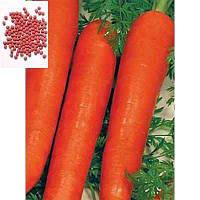 Морква Лагуна F1 (рання) / Морковь Лагуна Ф1 (10 гр./5-10 тис.нас.)