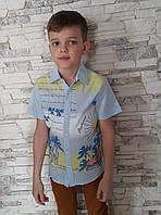 Рубашка с короткими рукавами для мальчиков Beach guard
