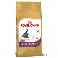 Royal Canin Kitten British Shorthair (Котята Британцы), 10 кг