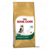 Royal Canin Maine Coon (Мейнкун взрослый), 10 кг