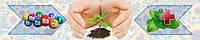 Стаканчики для розсади та гербіцид для буряків