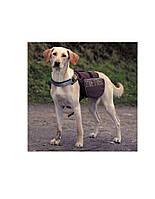TRIXIE рюкзак для собаки 27 x 16 см черный M бирюзово-голубой