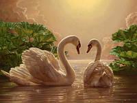 Картина по цифрам MG301 Любовь (лебеди) (40 х 50 см) Вундеркинд
