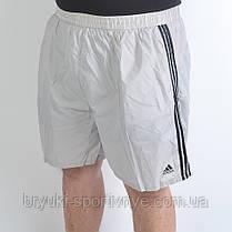 Шорты Adidas в больших размерах, фото 2