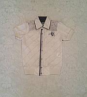 Рубашка для мальчиков с коротким рукавом