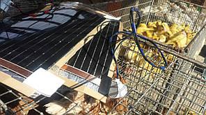 Инфракрасное отопление в брудере для цыплят, перепелов