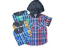 Рубашка  с капюшоном для мальчиков,Glostory, размеры 98,98,98,104,110,116, арт. 8146