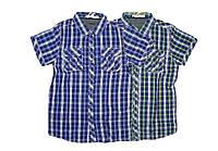 Рубашка  с коротким рукавом  для мальчиков,Glostory, размеры 134-164 арт. 8154