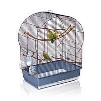 Как выбрать клетку для попугая