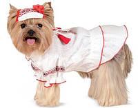 Вышиванка Pet Fashion Марийка, для собак девочек, XXS (18-22, 25-29)